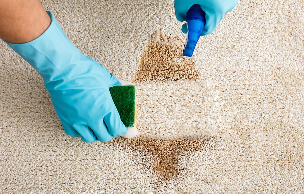 Top Tips On Maintaining Your Carpet - Chem-Dry Singapore Cleaning Service